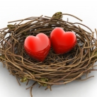 hearts in nest